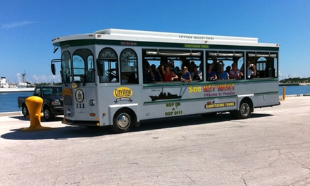 Hop-On, Hop-Off Trolley Tour for One, Two, or Four from City View Trolley Tours (36% Off)