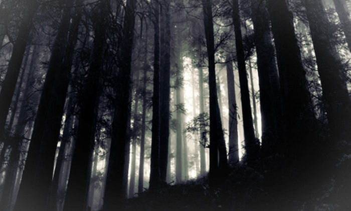 Haunted Woods in Howell - 6: One-Hour Haunted Walking Tour for One or Two from Haunted Woods in Howell (Half Off)