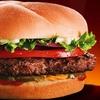 $5 for Burgers at Back Yard Burgers