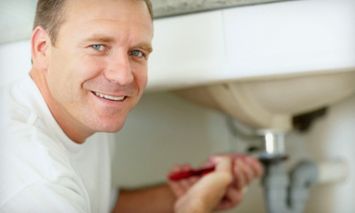 Bosco Home Services - Toronto (GTA): Drain Cleaning With or Without Inspection or $40 for $100 Worth of Plumbing Services from Bosco Home Services