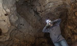 Black Hills Caverns: Black Hills Cavern Tour for Two or Four at Black Hills Caverns (46% Off)