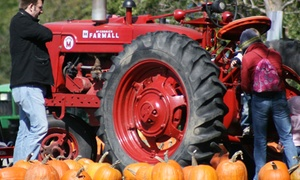 Abbey Farms of Marmion Abbey: Pumpkin Daze Autumn Festival for Four or Six at Abbey Farms of Marmion Abbey (Up to 38% Off)