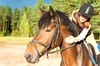 Country Farms Camp & Equestrian Center - Country Farms Equestrian Center: Two or Four Private Lessons or a Birthday Party at Country Farms Camp & Equestrian Center (Up to 51% Off)