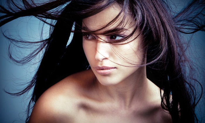 Shears to You Salon & Mobile Boutique - Indian Hills: One or Two Brazilian Blowouts at Shears to You Salon & Mobile Boutique (Up to 53% Off)