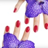 Half Off Two No-Chip Manicures at Sonia Salon