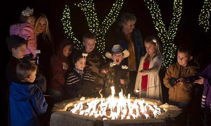Natural Bridge Caverns - Natural Bridge Caverns: Admission for Two or Four to Christmas at the Caverns (Up to 42% Off). 10 Options Available.