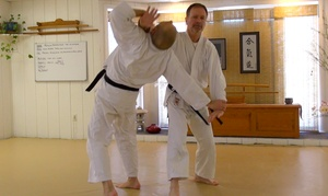 Ocean State Aikido: One or Two Months of Adult Aikido Classes at Ocean State Aikido (Up to 53% Off)