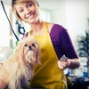 56% Off Pet Grooming at Brother Wolf Animal Rescue