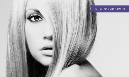 Haircut with Optional Single-Process Color at Civello (Up to 52% Off)
