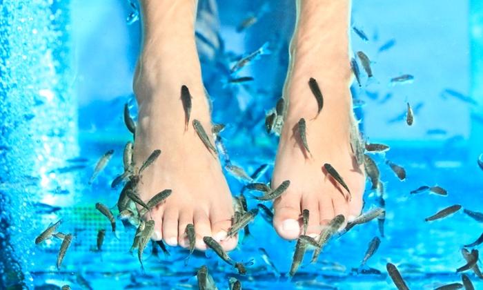 Pesciolini Birichini - PESCIOLINI BIRICHINI: 3 o 6 trattamenti di fish manicure o fish pedicure da 19,90 €