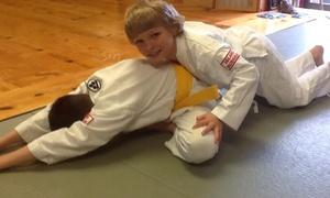 Kenkukai Martial Arts: $39 for $130 Groupon — Kenkukai Martial Arts