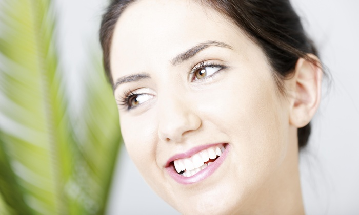 Pouran's Aesthetic Services - Oak Lawn: $60 for $120 Worth of Microdermabrasion — Pouran's Aesthetic Services