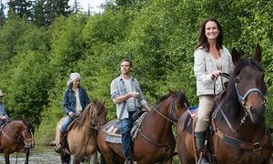 El Chaparral: Paseo a caballo de 90 minutos para dos personas por 19,95 € o de 3 horas por 29,95 € por la sierra de Aracena