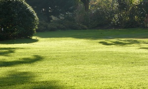 Fairway Lawn Service: Weed Pre- and Post-Emergent Application for Lawn from Fairway Lawn Service (Up to 81% Off)