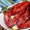 Up to 34% Off Lobster Dinner at Caffe Regatta Oyster