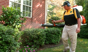 Mosquito Joe: $39 for an Outdoor Mosquito Treatment for up to an Acre from Mosquito Joe ($99)