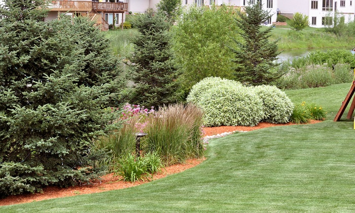 Knights Landscaping - Mesquite: Landscaping Package with Mowing and Hedge Clipping from Knights Landscaping (50% Off)