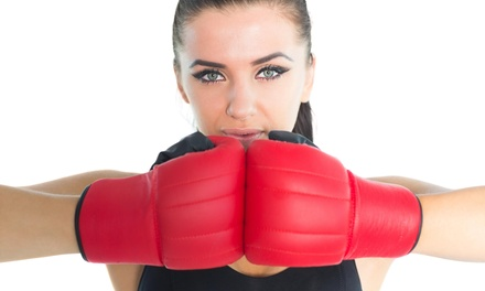 $29 for $89 Worth of Boxing Lessons — Mmaxout Fitness