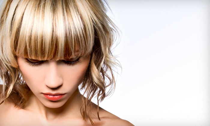 Cut Loose with Cathy @ Color Lounge Salon - Grand Rapids: Haircut, Style, and Deep Conditioning with Optional Partial or Full Highlights at Cut Loose with Cathy (Up to 56% Off)