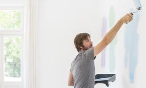 Decor White: Imbiancatura delle pareti fino a 150 m² calpestabili con Decor White (sconto fino a 83%)