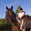 Up to 65% Off Kids' Horse-Riding Camp at Springs Equestrians