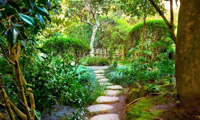 Merrifield Garden and Design - Boston: $293 for $450 Worth of Landscaping — Merrifield Garden and Design