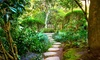 Merrifield Garden and Design - Boston: $293 for $450 Worth of Landscaping — Merrifield Garden and Design