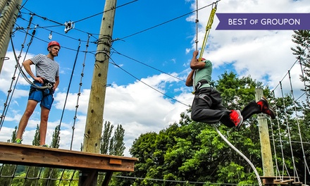 2.5-Hour Aerial-Adventure-Park Package from Adventura (Up to 51% Off). Three Options Available.