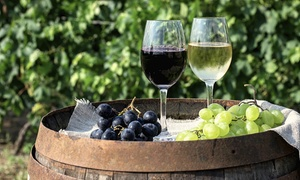 Grayhaven Winery LLC: Admission to South African Wine Festival for Two or Four at Grayhaven Winery LLC (50% Off)