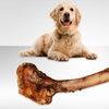 Venison Femur Chewing Bone for Dogs