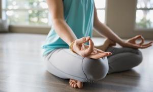 Centro Studi DanzArea: 10 lezioni di yoga ashtanga e vinyasa per una o 2 personeal Centro Studi DanzArea