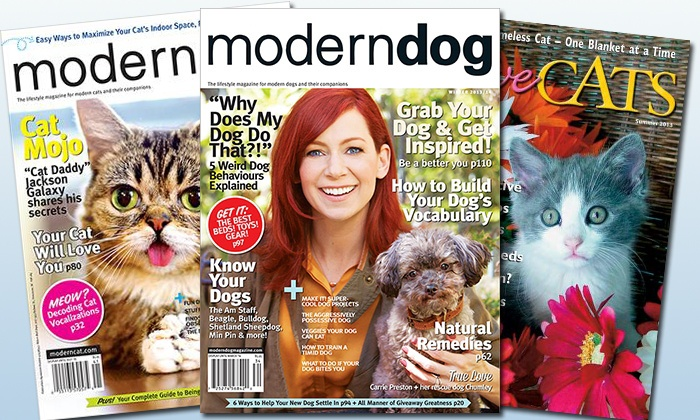 "Blue Dolphin Magazines: Subscription to ""Modern Dog,"" ""I Love Cats,"" or ""Modern Cat"" from Blue Dolphin Magazines (Up to 52% Off)"