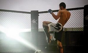 TK MMA & Fitness: Choice of 10 MMA or Fitness Classes at TK MMA & Fitness