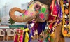 11 Day India Holi Festival of Colors & Elephant Festival Tour: 11-Day Tour of India with Accommodations, Guided Tours, and Daily Breakfast from Bohemian Tours