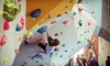 Toronto Climbing Academy - Toronto Climbing Academy: $49 for a Beginner's Climbing Lesson, One-Month Membership, and Gear Rental at Toronto Climbing Academy ($136.28 Value)