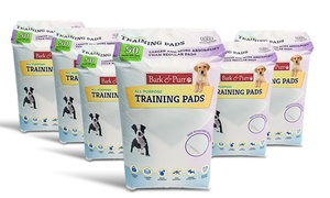 Puppy Training Pads (300-count)