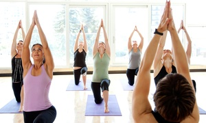 Yoga 365: The Hot Yoga Center: 5 of 10 Yoga Classes, or 1 Month of Unlimited Yoga Classes at Yoga 365 (Up to 51% Off)