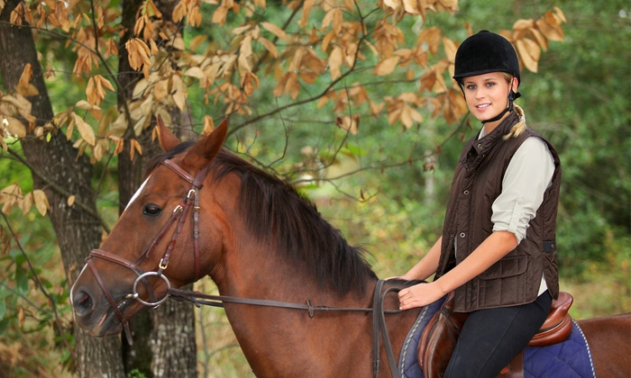 Pine Fall Farm - Lunenburg: Two or Four 30-Minute Private Horseback-Riding Lessons at Pine Fall Farm (Up to 57% Off)