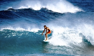 Extreme Surf and Sport Consignment: Gently Used Surf and Sports Equipment at Extreme Surf and Sport Consignment (50% Off). Two Options Available.