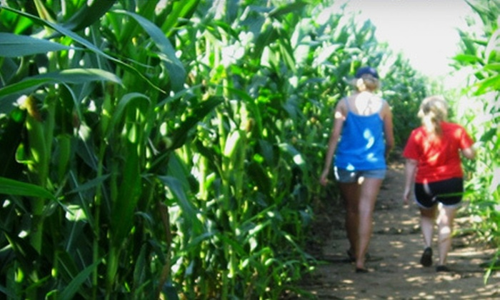 Skinny Bones Cornmaze & Pumpkin Patch - 7: Autumn-Themed Visits for Two at Skinny Bones Cornmaze & Pumpkin Patch (Half Off). Two Options Available.