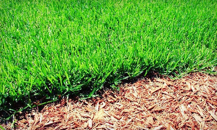 Mow-Trim-Blow - Northeast Virginia Beach: Lawn Aeration for Up to a Quarter or Half Acre from Mow-Trim-Blow (Up to 55% Off)