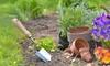 Garden Design, Landscaping Course