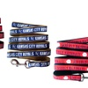 MLB American League Officially Licensed Dog Leash