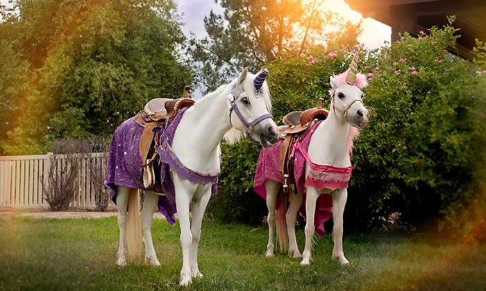 Tiaras N Tails - Chandler: $279 for an On-Location Princess and Unicorn Party for Up to 12 Kids from Tiaras N Tails ($425 Value)