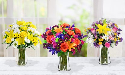 Vibrant <strong>Flowers</strong> with Shipping Included from Blooms Today (50% Off)