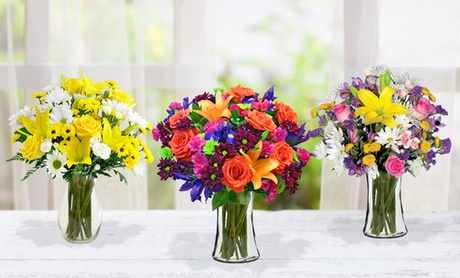 Vibrant Flowers with Shipping Included from Blooms Today (50% Off) ac7935bc-ebc8-483e-99b0-1bd71c7b0ad3