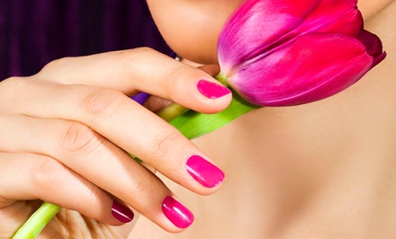 One or Two Shellac Manicures or One Spa Mani-Pedi at Day Lily Hair and Nail Salon (Up to 34% Off)