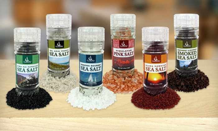 GourmetNut Salt Grinders or Spice Rubs: Six GourmetNut Artisan Salt Grinders or Five Gourmet Spice Rubs (Up to 55% Off)