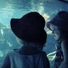 Up to 63% Off a Summer Camp at World Aquarium