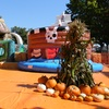 Up to 44% Off Inflatable Play Passes